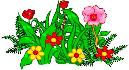 Plant Sale | St Luke's Cheshire HospiceSt Luke's Cheshire